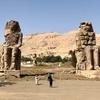 エジプト ルクソール 西岸 忽然とあらわれる「メムノンの巨像」、損傷が激しい巨像 と 飛び交う鳩たち