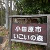 【神奈川・小田原】わんぱくらんど・いこいの森キャンプ場