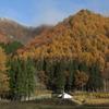 晩秋の萩ノ倉山へ植栽作業