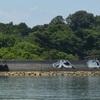 【現代アート】岡山県 犬島 の写真・アクセス方法・注意点