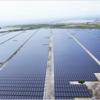 ◇再生可能エネルギー電気の調達に関する特別措置法=FIT法