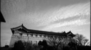 Snap #190 東京