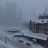 2014年2月8日 大雪の東京に繰り出したことの顛末