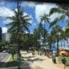 スクート激安ハワイ旅行、最終日はアラモアナ、ロングスドラックス