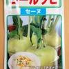 個性的な野菜「コールラビ」の水耕栽培に挑戦。どんな味なのかワクワクしながら育てています