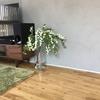 家仕事でイライラを消す方法
