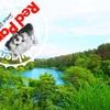 【福島県・裏磐梯】神秘の湖沼、五色沼を見てきた話!!