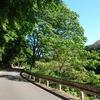 北摂ライド:大野山~西峠~永沢寺を巡ってみた。