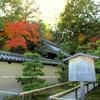 京都 高桐院の小さな参道
