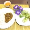 のり子先生の食育教室