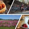 【三重大学】サイクリングサークル新入生募集!安濃ダムのダムカレーとさるびの温泉のパン工房!