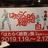 NANA MIZUKI LIVE GRACE 2019 OPUS III DAY 2