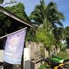フィリピン☆ネグロス島周辺の旅2日目!世界中のダイバー憧れの地、アポ島でダイビング!