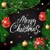メリークリスマスでございます。ホワイトクリスマスになりました。