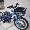 【2歳10ヶ月】自転車届きました!!