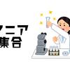 マニアフェスタvol.2が2月16日、17日にアーツ千代田3331で開催