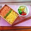 【お弁当】鮭と卵そぼろ丼弁当20180629