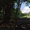 富士山パワースポットの山宮浅間神社