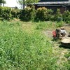 がんばれ、草刈り