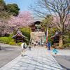 鬼平「むかしの男」雑司ヶ谷、護国寺、根津、庚申塚界隈を歩く
