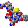 オキシトシン…「愛情ホルモン」あるいは「幸せホルモン」とも呼ばれるもの
