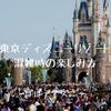 混雑時の東京ディズニーリゾートを楽しむ方法