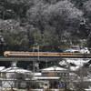 雪×国鉄特急色