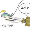 人生で、一度はアオリイカ釣りを経験しよう!
