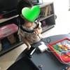 【海外生活】子どもの誕生日・グッディバッグ