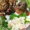 5月から9月は禁漁、食べるならいま! 禁漁期前最後の伊勢海老入荷!