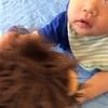中学校の家庭科の授業「赤ちゃんと触れ合う」に潜入!育児の実態を知りあう異世代間交流の良さを実感しました