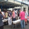 葛飾愛魚会研究会に参加して観魚会研究会を見学しました