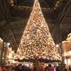 東京ディズニーランドクリスマスファンタジー2016