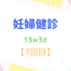 13w3d 妊婦健診【3回目】 涙の健診