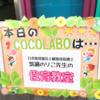野菜たっぷりもち米入り白菜ロール~のり子先生の食育教室~