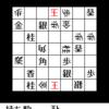 詰将棋迷路:問題22