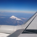 飛行機で旅したい