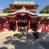 富岡八幡初詣の下見に行きました。