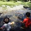 思い付きで川遊びに行って得た収穫