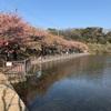 悲しき悲話のこる 小松ヶ池の怪(三浦市)