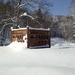 美しすぎて絶句!!北海道、真冬の神の子池へ行く時の3つのマストアイテム!!