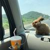 ぴょらん、番外!広島への旅(=^x^=)①