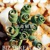 【BOOK NEWS】ブルータス次号の特集は「珍奇植物」、おぉ!