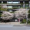 京橋→八重洲地下街→大宮。(2020.3.28土)