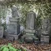 人々から忘れ去られし 洞窟に眠る馬頭観音像(横須賀市)