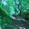 湘南平〜高麗山を新緑ハイキング!