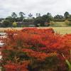 金沢城公園「秋」