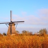 【世界遺産】この景色を見たかった!風車立ち並ぶオランダ キンデルダイク