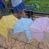 捨てられなかった傘。