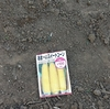 8月の種まき トウモロコシリベンジ